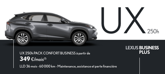 voiture-lexus-team-colin-ile-de-france-business-ux
